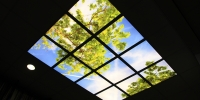 dmv LED is echt buitenlicht gecreeerd